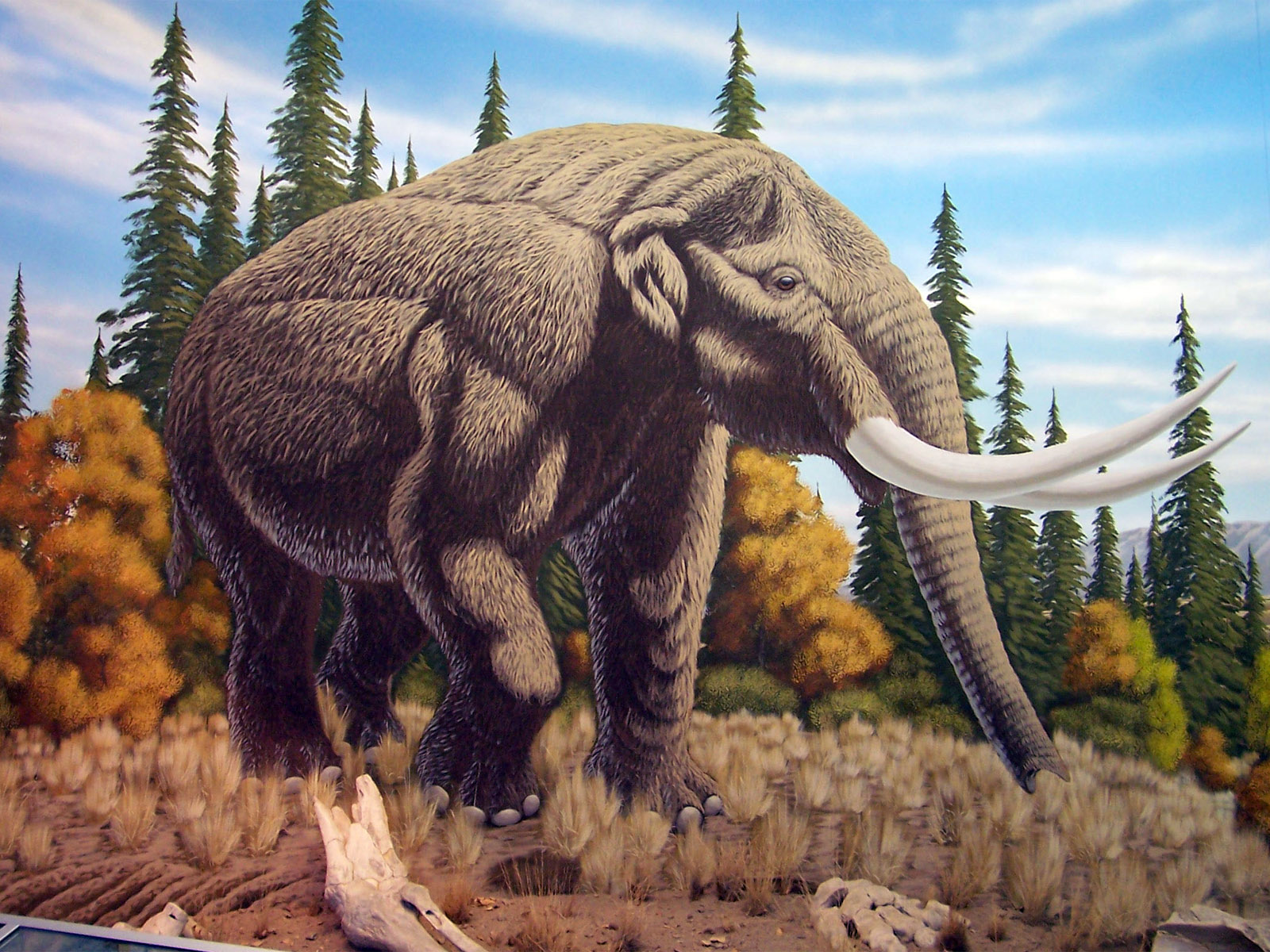 mastodon wallpaper free hd backgrounds images pictures