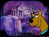 Scooby Doo Wallpaper