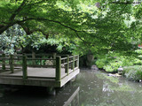 Japanese Garden Two Wallpaper