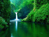 Jungle Water Fall Wallpaper