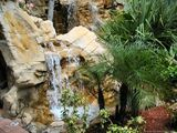 Paradise Water Fall Wallpaper
