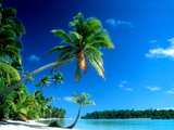 Sandy Beach Wallpaper