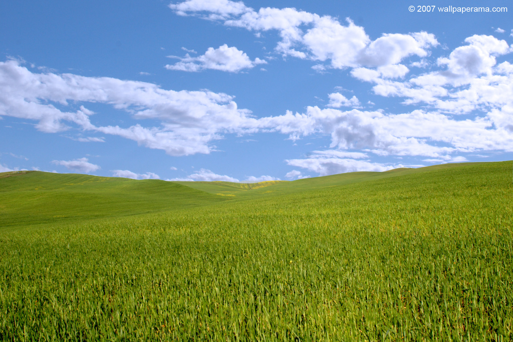 Windows Xp Wallpaper Free HD Backgrounds Images Pictures