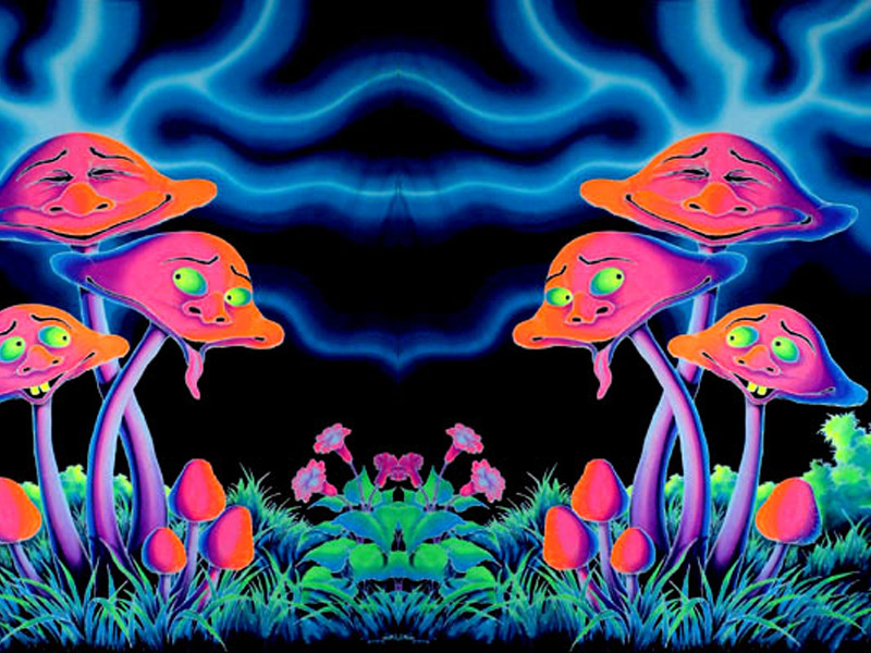 Erowid Psychoactive Vaults  Natural Highs FAQ