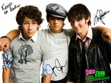 The Jonas Brothers Wallpaper