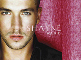 Shayne Ward Wallpaper