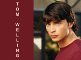Tom Welling Wallpaper