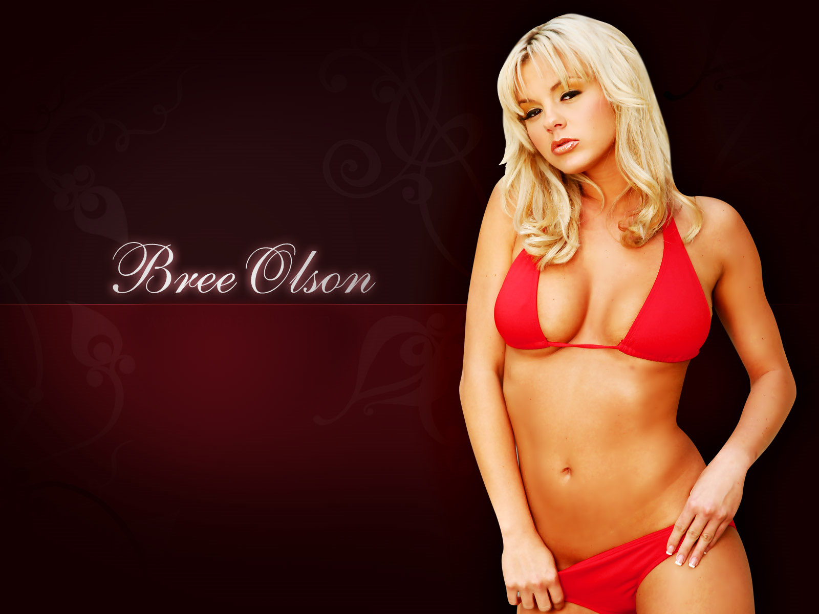 bree-olson Wallpaper