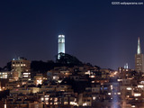 Coit Tower Wallpaper