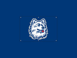 University Of Connecticut Huskies Wallpaper