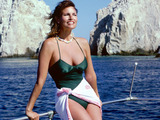 Raquel Welch Wallpaper